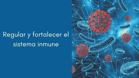 Regular y fortalecer el sistema inmune